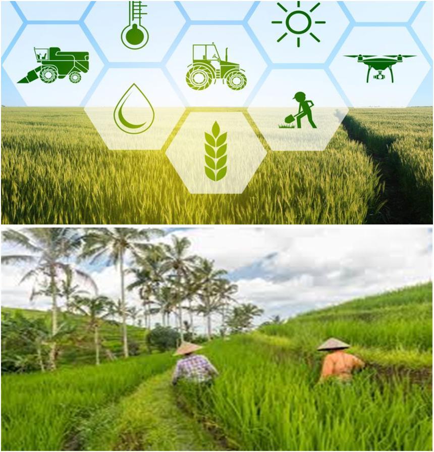 """ANGLAIS 2è ANNEE BTS """"Agriculture Tropicale Production Végétale"""" (ATPV)"""