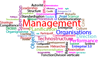 Management des Organisations 2021